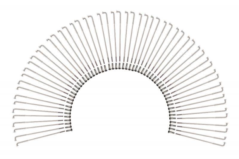 56Speichen-Edelstahl-poliert